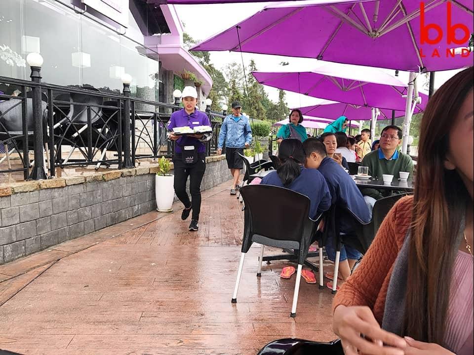 Đánh giá quán Thanh Thuỷ Coffee - Đà Lạt