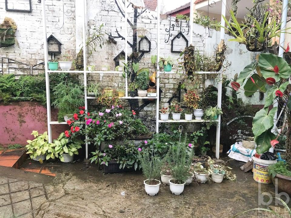 Hình 10 - Đánh giá quán Daily Coffee - Cà phê đẹp ở Đà Lạt?